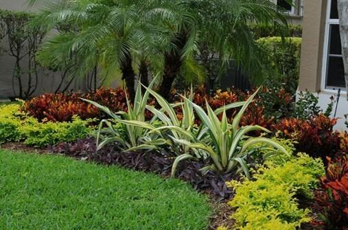 installation d'un jardin